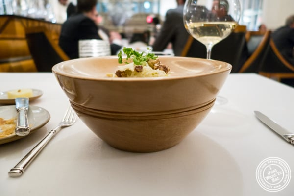 Waldorf salad bowl at Eleven Madison Park in NYC, New York