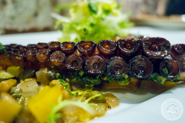Octopus a la plancha at TESSA, Upper West Side, NYC, New York