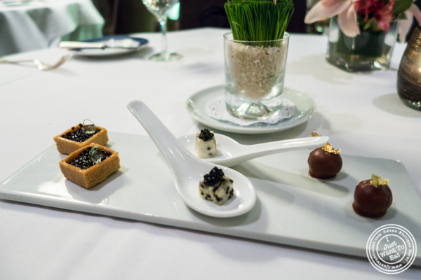 Amuse bouche at Petrossian in NYC, New York