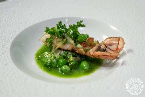 Langoustine with green peas at Petrossian in NYC, New York
