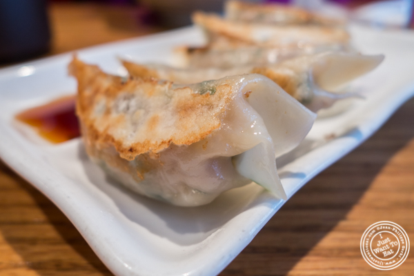 Pork gyoza at Katsu Hama in NYC, New York