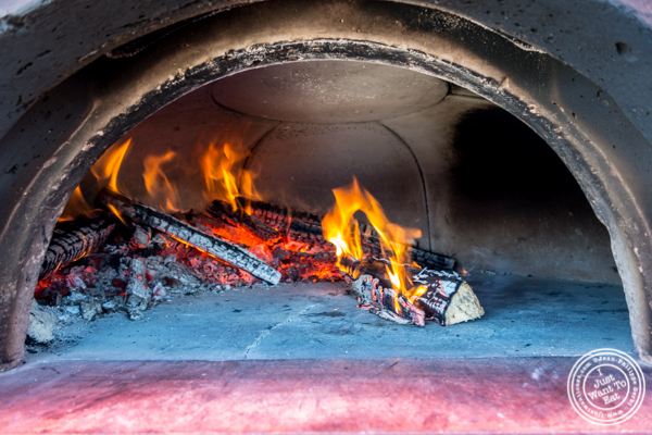 Wood fire oven of the Pizza Vita truck at Pier 13 in Hoboken, NJ