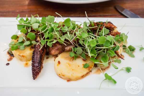 Grilled octopus salad at Gran Morsi, Italian restaurant in TriBeCa, NYC