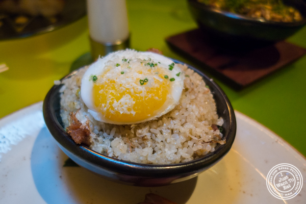 Duck egg and duck confit fried rice at The original Morimoto in Philadelphia, PA