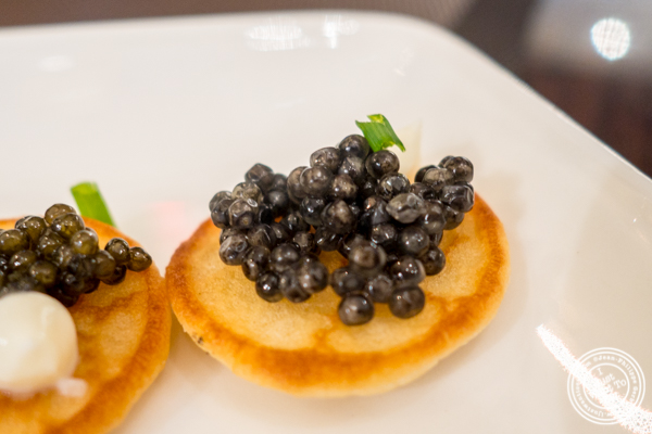 Beluga caviar at Olma Caviar Boutique & Lounge on the Upper West Side, NYC