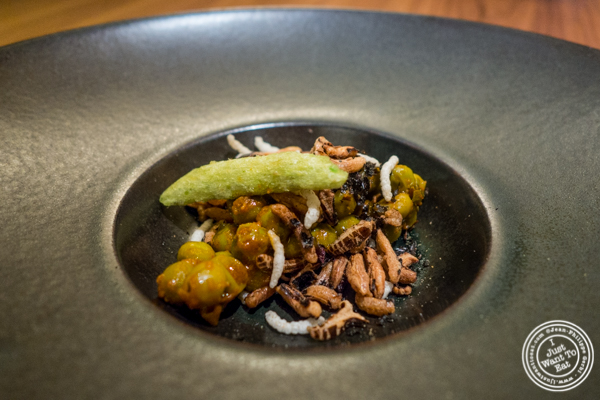 Fresh green peas and puffed rice at Indian Accent at The Parker Meridien, NYC