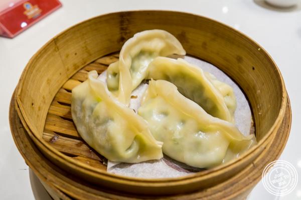 Vegetarian dumplings at Bite of Hong Kong in Chinatown, NYC