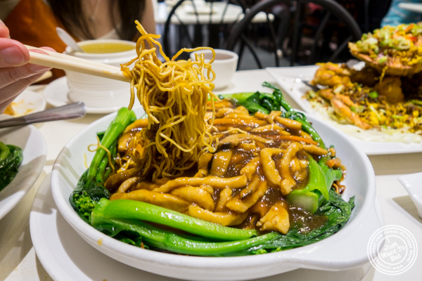 Chicken pan-fried noodles at Bite of Hong Kong in Chinatown, NYC