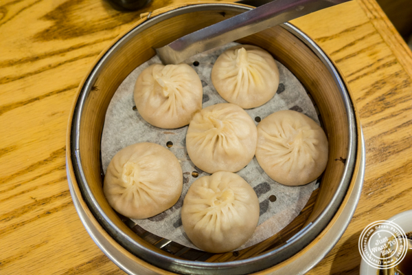Soup dumplings at Shanghai Asian Cuisine in Chinatown, NYC