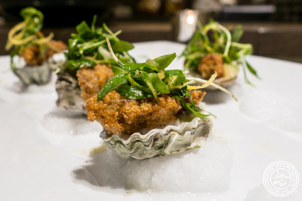Fried oyster at Todd English Food Hall at the Plaza Hotel, NYC, New York