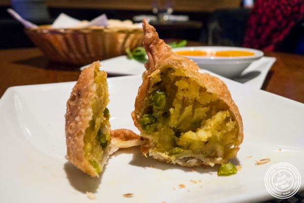Vegetable samosa at Lala Sahab in NYC, New York