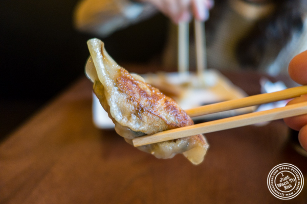 Pork gyoza at Cho-Ko Ramen in the Lower East Side, NYC