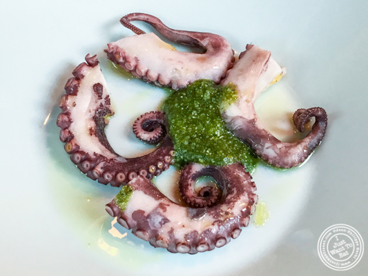 Octopus at Gaudi Café in Grenoble, France