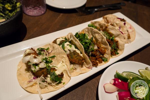 Tacos at Habanero Blues in NYC, NY