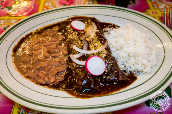 Chicken mole at El Maguey Y La Tuna, Lower East Side, NYC, NY