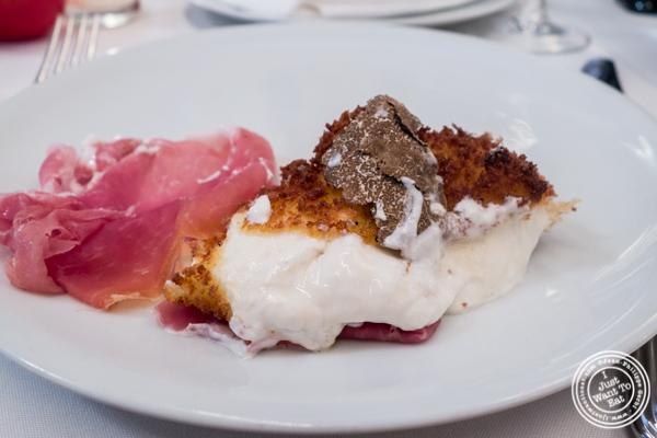 Deep fried burrata with truffle at Mamo NYC in Soho