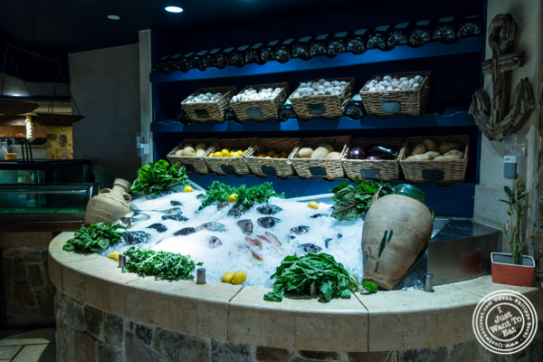 Fish display at Estia in Philadelphia, PA