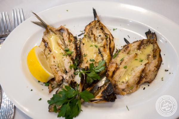 Grilled sardines at Estia in Philadelphia, PA