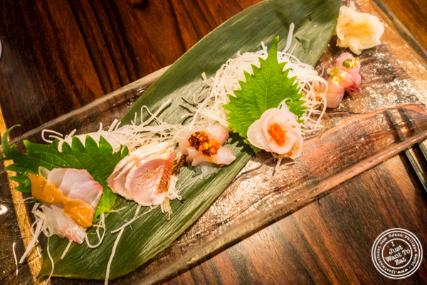 Sashimi sampler at Amami in Greenpoint, Brooklyn