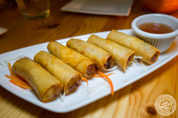 Spring rolls at Pad Thai Noodle Lounge in NYC, NY