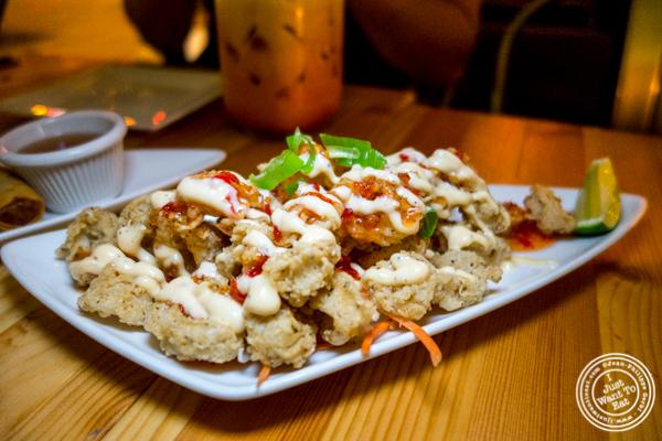 Lava calamari at Pad Thai Noodle Lounge in NYC, NY