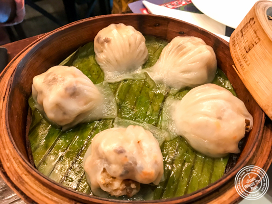 Shrimp dumplings at Soi 7 Pub & Brewery at The Cyber Hub in Gurgaon, India