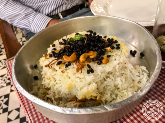 Vegetable berry pulao at Soda Bottle Opener Wala in Noida, India