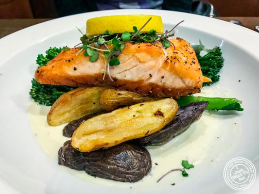 Pan seared salmon at Bistro 72 in Riverhead, Long Island