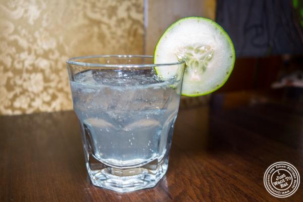 Hendrick's Samurai cocktail at Alpha Fusion in NYC, NY