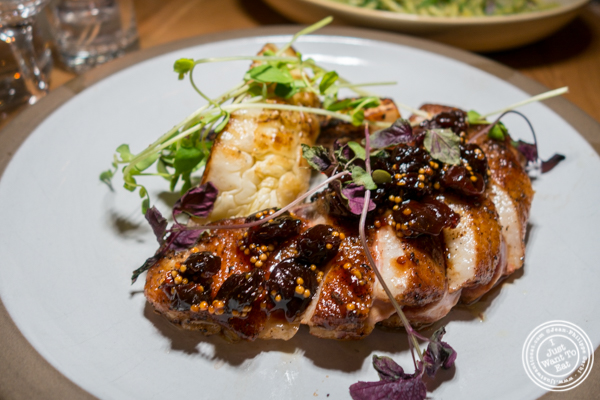 Duck at Jams, Midtown West, NYC, NY