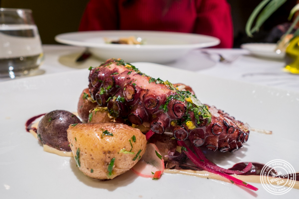 Octopus at Marea in NYC, NY