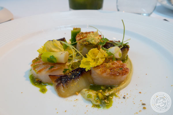Seared scallops at The Modern next the MOMA