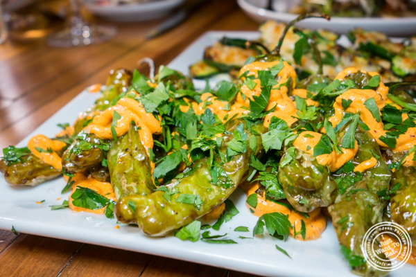 Shishito peppers at Ruumy's Tavern in Hell's Kitchen