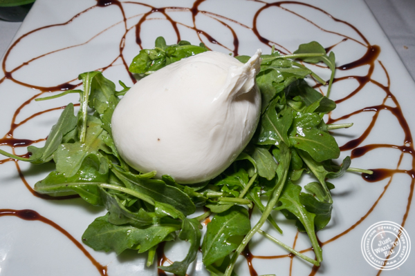 Burrata at Il Falco in Long Island City