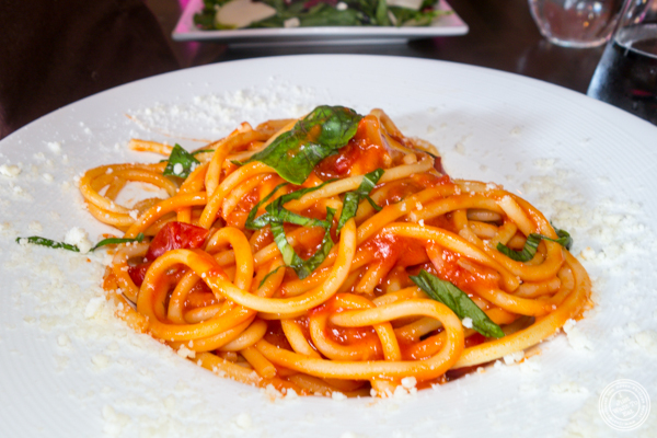 Bucatini al'amatriciana at Zero Otto Uno in Hoboken, NJ