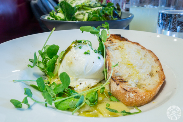 Burrata at Cookshop in NYC, NY