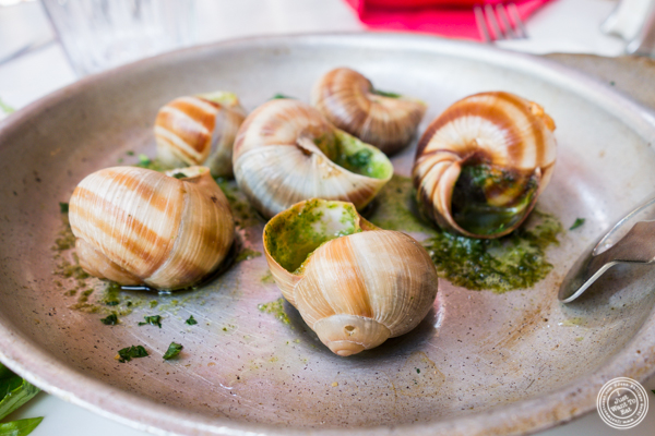 Escargots at Chez Marie in Lyon, France
