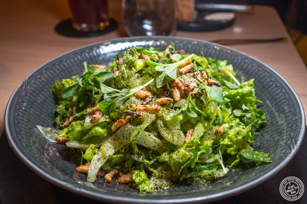 Green salad at Agern, in Grand Central Terminal, NYC