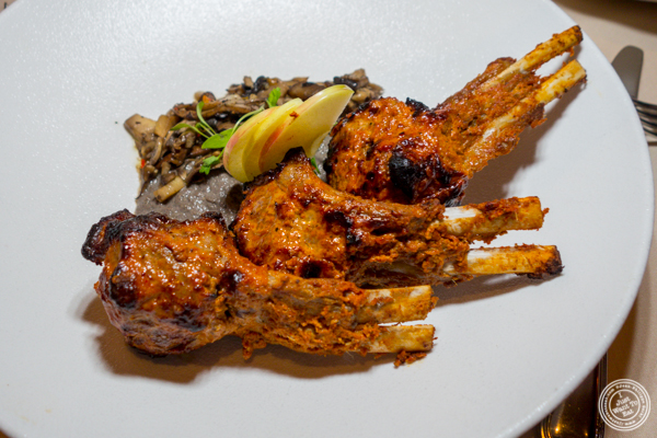 Lamb chops at Junoon in NYC, NY