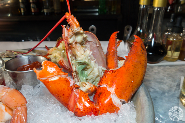 Lobster at Stingray Lounge in Hoboken, NJ