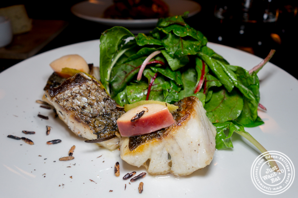 Stripped bass at Foragers Table in Chelsea