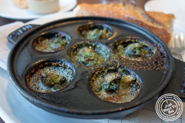 Scotch snails at Manhatta in NYC, NY