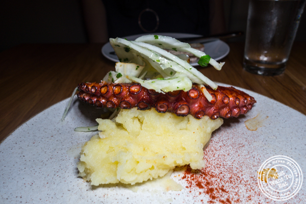 Pulpo a la plancha at Boqueria in Times Square