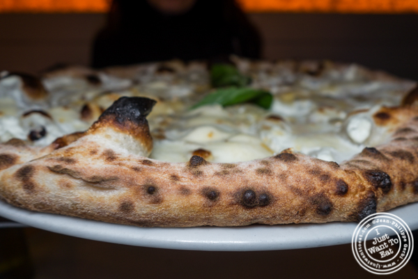 4 cheese pizza at Levante in LIC