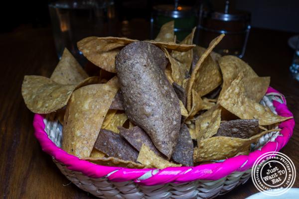 Tortilla chips at Gracias Madre in Los Angeles