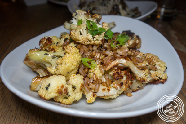 Roasted cauliflower and farro at Delphine in the W Hotel, Los Angeles