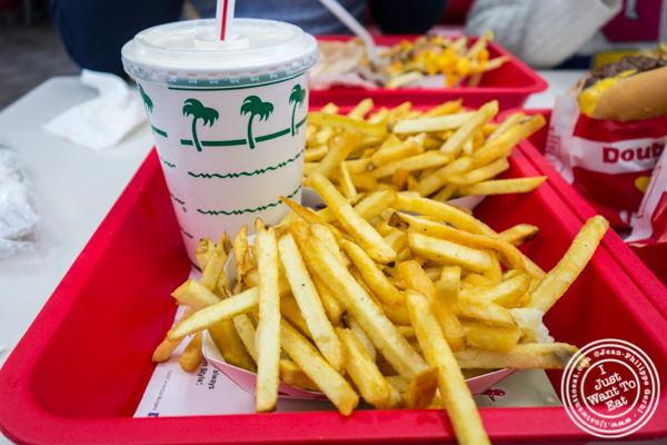 Milkshake and fries at In-N-Out Burger in San Diego