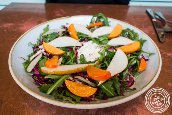 Persimmon and burrata salad at Ironside Fish & Oysters in San Diego