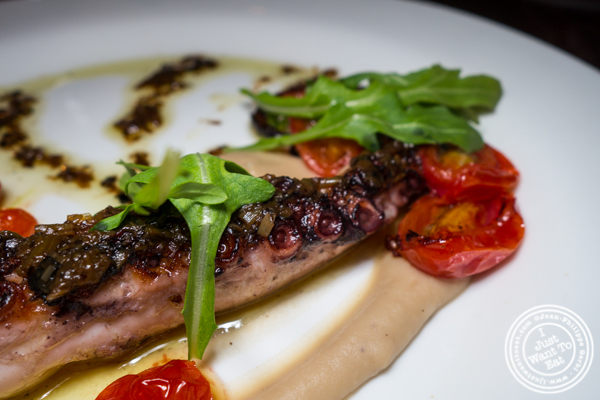 Spanish octopus at Sociale in Brooklyn