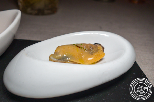 Mussel at L'Appart in NYC